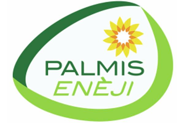 Climate Impact of Palmis Eneji LPG stove project